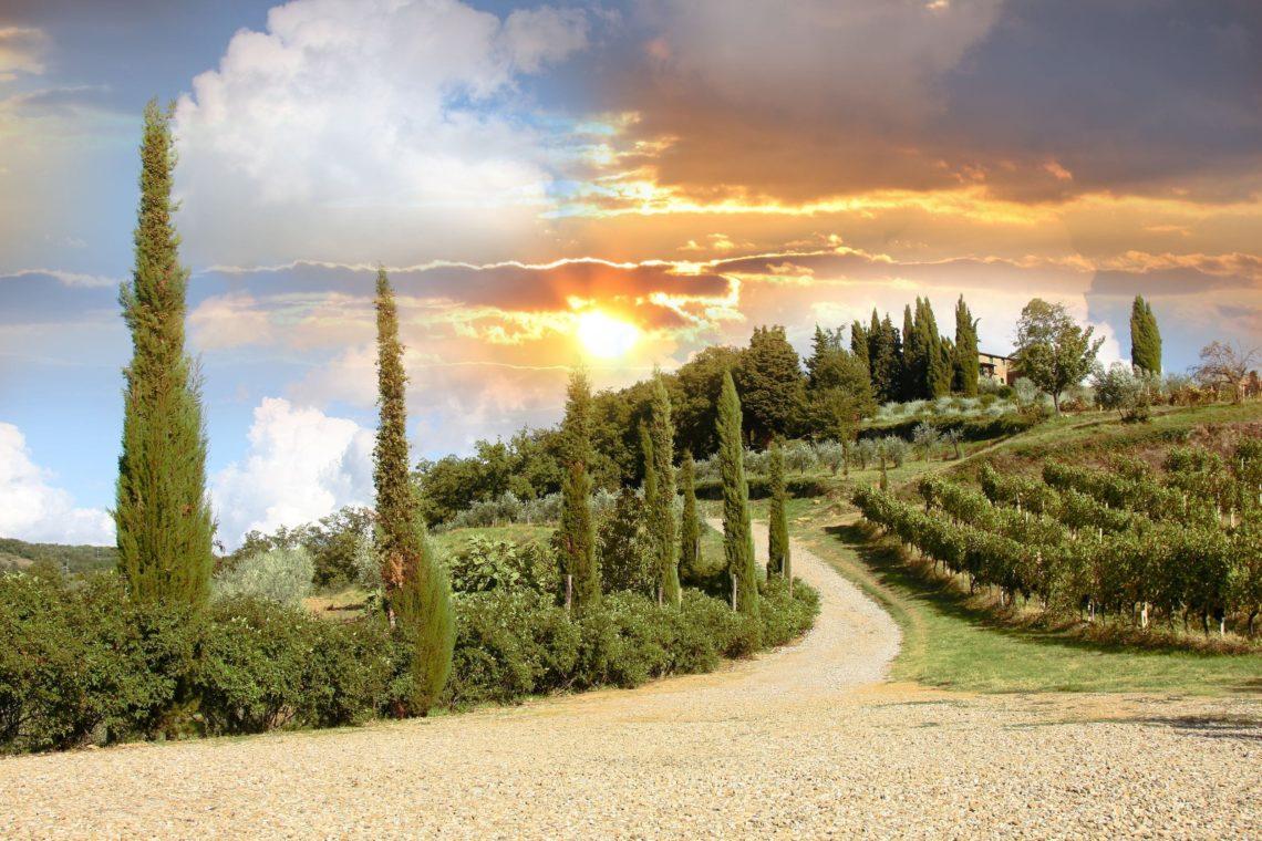 Paisagem de vinhedo em Chianti na Toscana, Itália.